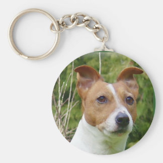 Jack Russell Key Ring