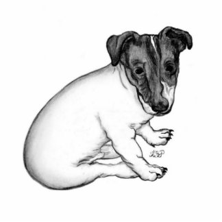 Jack Russell puppy 10 weeks old Photo Sculpture Badge