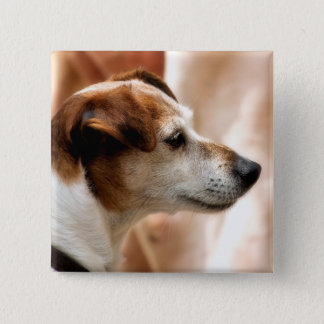 JACK RUSSELL TERRIER DOG 15 CM SQUARE BADGE