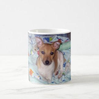 Jack Russell Terrier Puppy Coffee Mug