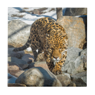 Jaguar Custom Products Small Square Tile