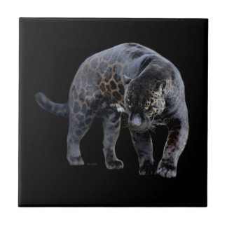 Jaguar Diablo small ceramic tile