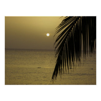Jamaican Sunset Poster