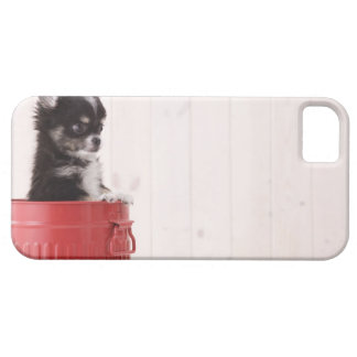 Japan 4 iPhone 5 cover
