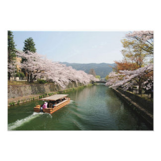 Japan, Kyoto. Flower viewing on the boat Art Photo