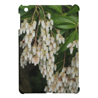 Japanese andromeda -white flowers, photograph cover for the iPad mini