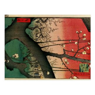 Japanese wood blocks print images postcard