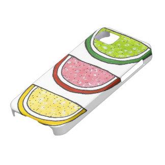 Jelly Gummy Fruit Slice Slices Sugar Candy Case