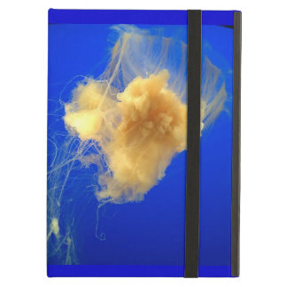 Jellyfish case