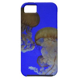 Jellyfish Iphone 5/5s Case