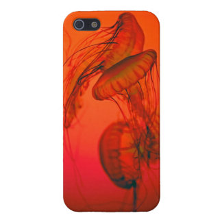jellyfish iPhone 5/5S covers