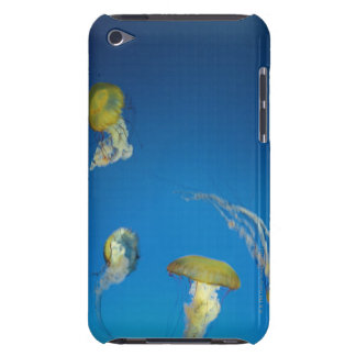 Jellyfish iPod Touch Cases