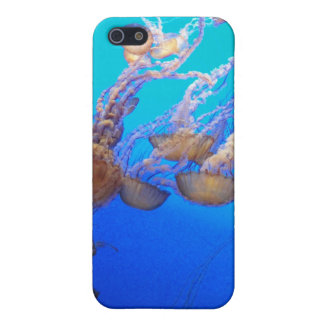 Jellyfish Love Cover For iPhone 5/5S