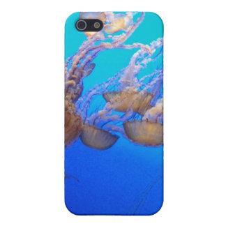 Jellyfish Love iPhone 5 Case