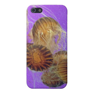 Jellyfish Purple Cover For iPhone 5/5S