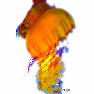 Jellyfish Sculpture Standing Photo Sculpture