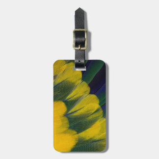 Jenday Conure Feathers Close-Up Luggage Tag