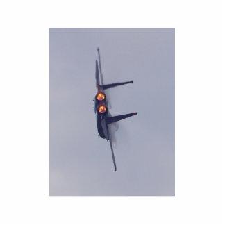 Jet Airplane Photo Sculpture