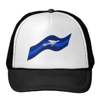 Jet in flight cap