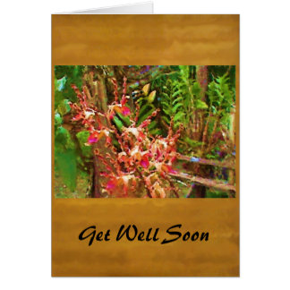 Jeweled Dendrobiums Card