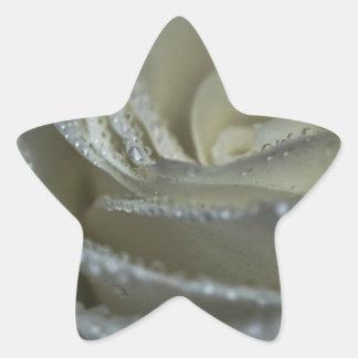 Jeweled Rose Star Sticker