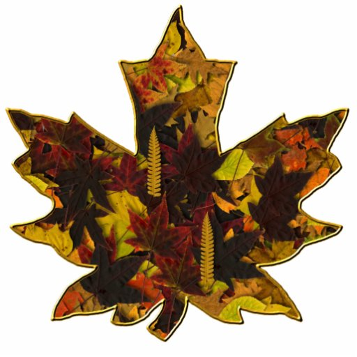 Jewelry - Pin - Autumn Leaves in Gold Photo Cut Out