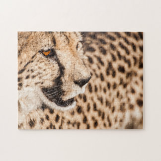 Jigsaw puzzle Portrait of a Cheetah