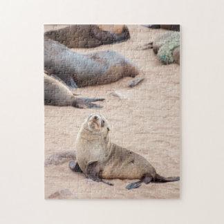 Jigsaw puzzle Seal Cub