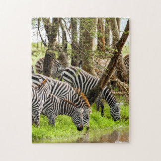 Jigsaw puzzle Zebras by the river