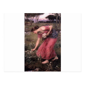 John William Waterhouse - Narcissus - Fine Art Postcard