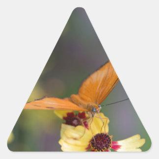 Julia Butterfly Triangle Sticker