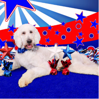 July 4th - GoldenDoodle - Max Standing Photo Sculpture