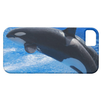 Jumping Orca Whale iPhone 5 Cases