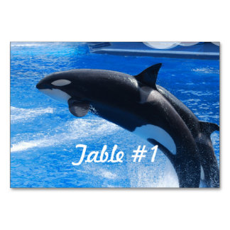 Jumping Orca Whale Table Cards