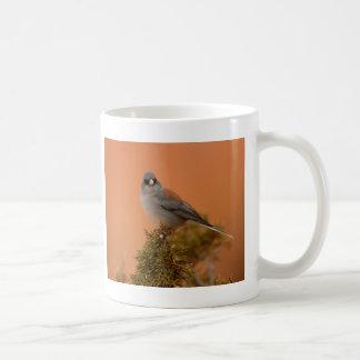 junco mugs