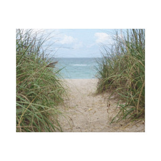 Jupiter Island - Florida - Sea Oats to the Ocean Canvas Prints