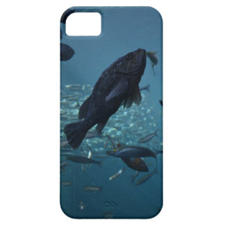 Just keep swimming... case for the iPhone 5