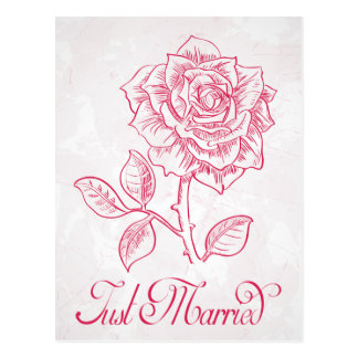 Just Married Flora Red Rose Flower Wedding Postcard