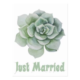Just Married Mint Green Succulent Cactus Wedding Postcard