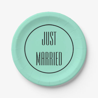 Just Married Wedding Reception Party Paper Plates