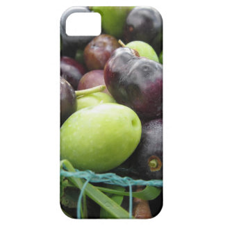 Just picked olives on the net during harvest time barely there iPhone 5 case