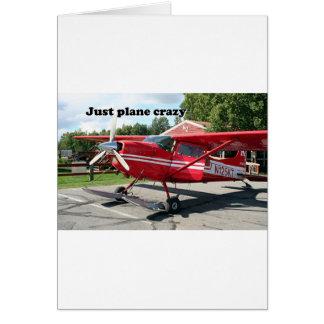 Just plane crazy: skiplane, Talkeetna, Alaska, USA Card