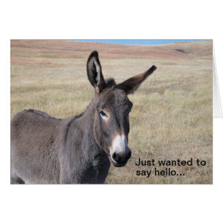 Just wanted to say hello... note card