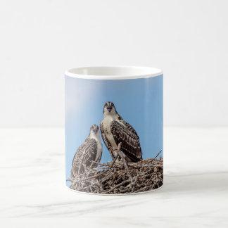 Juvenile Osprey in the nest Coffee Mug