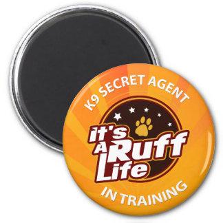 K9 Secret Agents Magnet