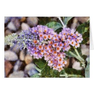 Kaleidoscope Butterfly Bush-Notecard Note Card