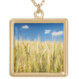 Kansas Wheat Gold Plated Necklace