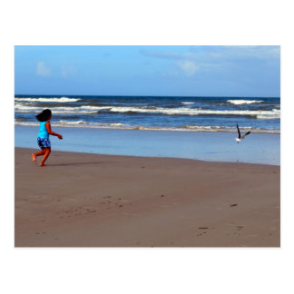 Kate and the Seagull Postcard