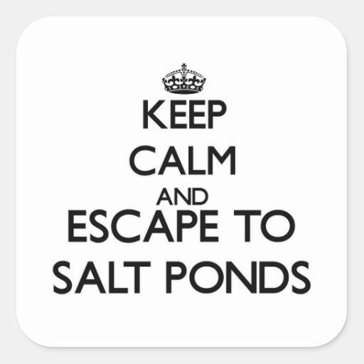 Keep calm and escape to Salt Ponds Virginia Square Sticker