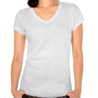 Keep Calm and focus on My Secret Admirer Shirt